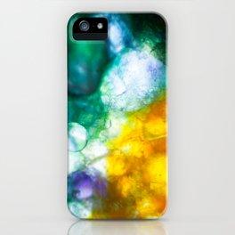 Ava Fielder - Student Artwork/Photography for YoungAtArt Fundraiser iPhone Case