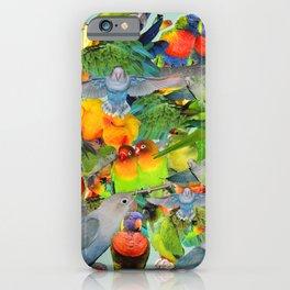 Parrots, parrots, parrots iPhone Case