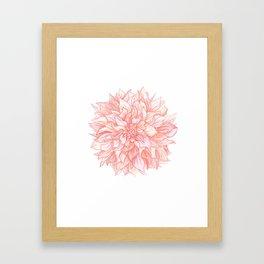 Dreamy Dahlia Framed Art Print