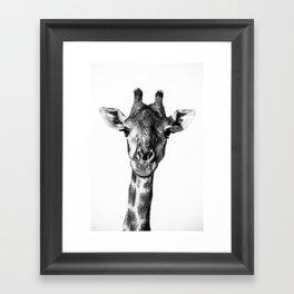 Giraffe Portrait I Framed Art Print