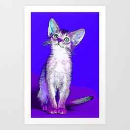 abyssinian cat kitten vector art Art Print