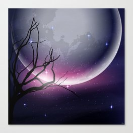 Face of the Moon Canvas Print