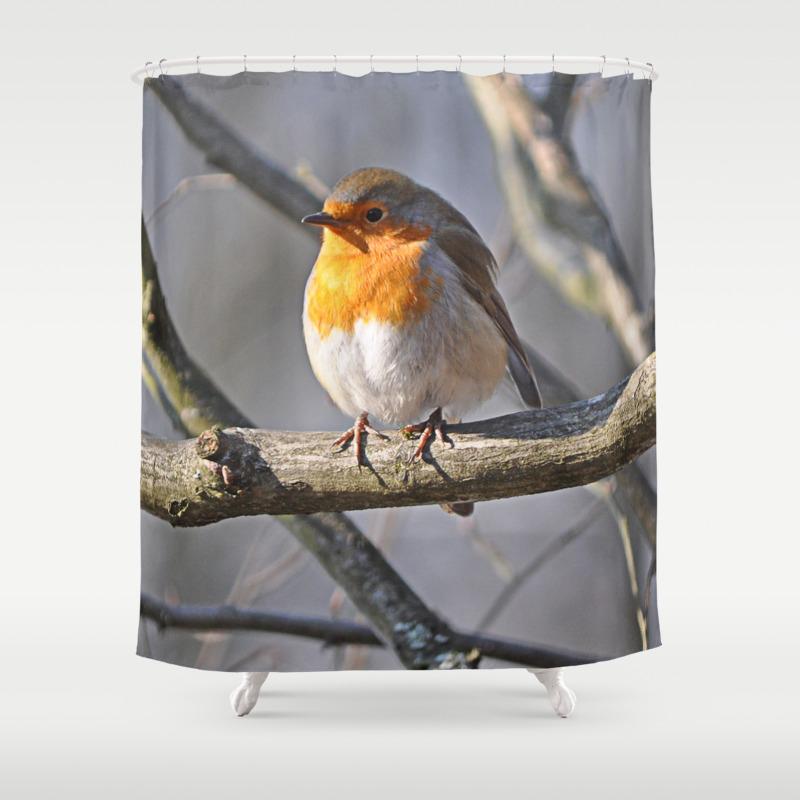 Fluffy Robin Redbreast Shower Curtain by Pirminnohr (CTN915575) photo