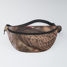 Turkey Vulture In Birch Tree Fanny Pack