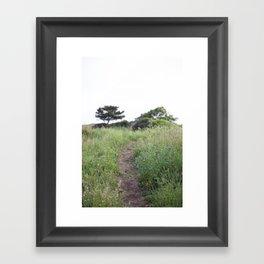 Grassy Hill Framed Art Print