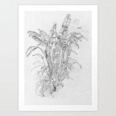 STRELITZIA JUNGLE Art Print