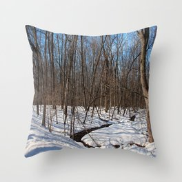 Frozen Freedom -horizontal Throw Pillow