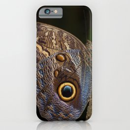 Owl butterfly in Costa Rica - Tropical moth iPhone Case