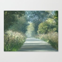 The road back home Canvas Print