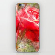 Red Roses Bouquet iPhone & iPod Skin