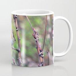 Garden Robin Coffee Mug