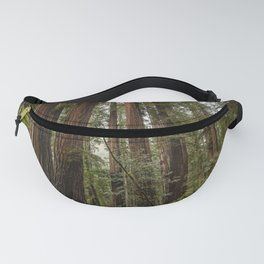 Redwood Forest Adventure VII - Nature Photography Fanny Pack