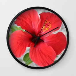 A Stunning Scarlet Hibiscus Tropical Flower Wall Clock