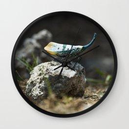 Lantern Bug Wall Clock