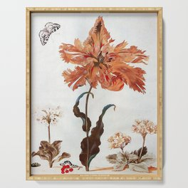 A Parrot Tulip Auriculas & Red Currants with a Magpie Moth Caterpillar Pupa by Maria Sibylla Merian Serving Tray