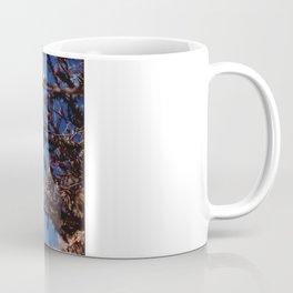 Sun-Bleached Blossom Coffee Mug