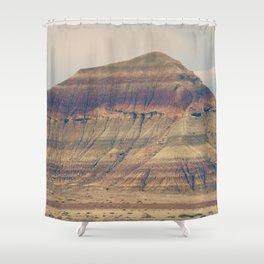 Petrified Desert Shower Curtain