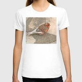 Lovely runaway canary bird T-shirt