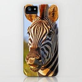 Smiling Zebra, Africa wildlife iPhone Case