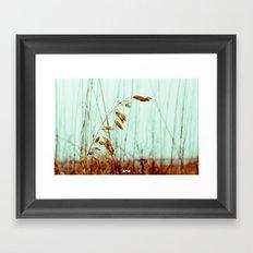 Sea Oats. Framed Art Print
