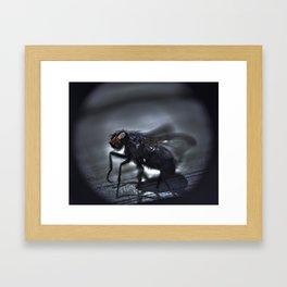 fly ties  Framed Art Print