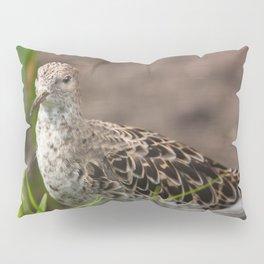 Female Ruff Pillow Sham