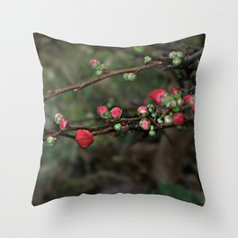 Japanese Red Quince Throw Pillow