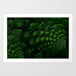 Macro Romanesco Broccoli - Low Key Art Print
