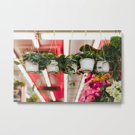 Mountain City Plant Co. Metal Print