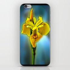 Yellow Iris iPhone & iPod Skin