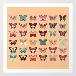 Butterflies collection 02 Art Print