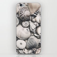 Sea Shell Collection vintage style monochrome iPhone & iPod Skin