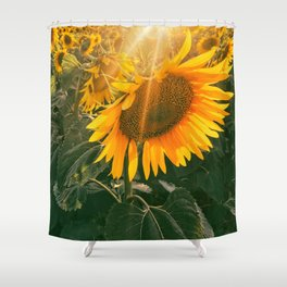 summer in the fields Shower Curtain