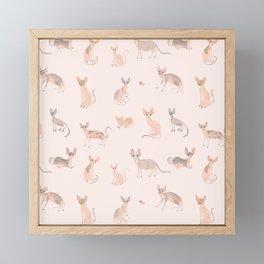 Sphynx Cats Framed Mini Art Print