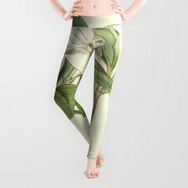 Cattleya skinneri Leggings