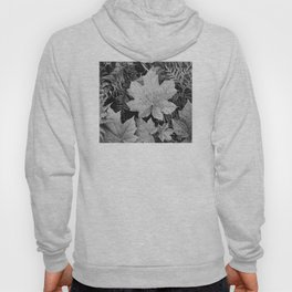 Ansel Adams - Leaves Hoody
