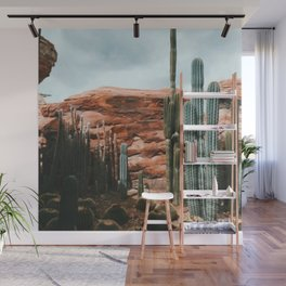 Photograph of  cactus nature's beauty Wall Mural