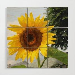 une seule fleur Wood Wall Art