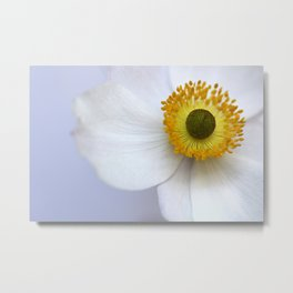 Pure and Simple Metal Print