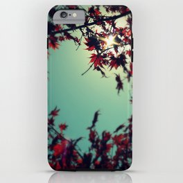 Autumn's Delight iPhone Case