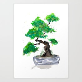 Green Bonsai Watercolor Art Print