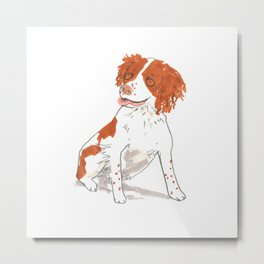 Springer Spaniel Dog Metal Print