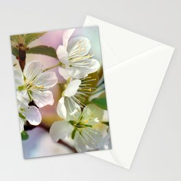 Spring 051 Stationery Cards