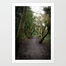 The road less travelled by Art Print