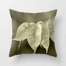 The curtain Throw Pillow