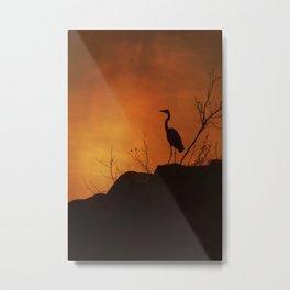 Night silhouette Metal Print