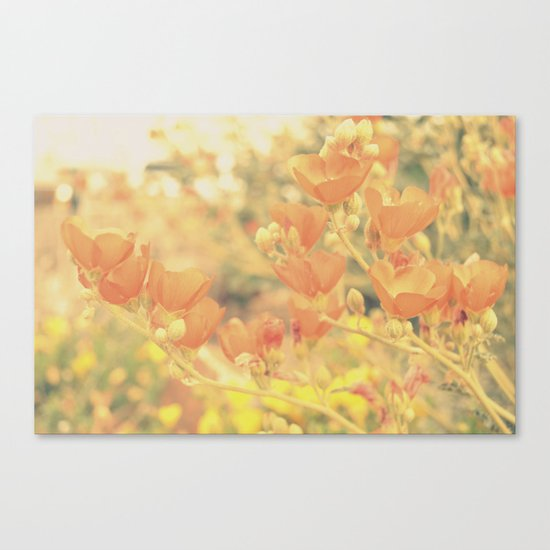 Warm Tones & Petals Canvas Print