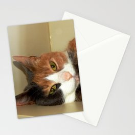 Want to take me home? Stationery Cards