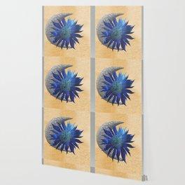 Sun and Moon Wallpaper