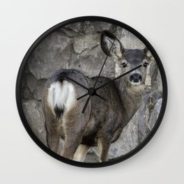 Young Mule Deer Wall Clock